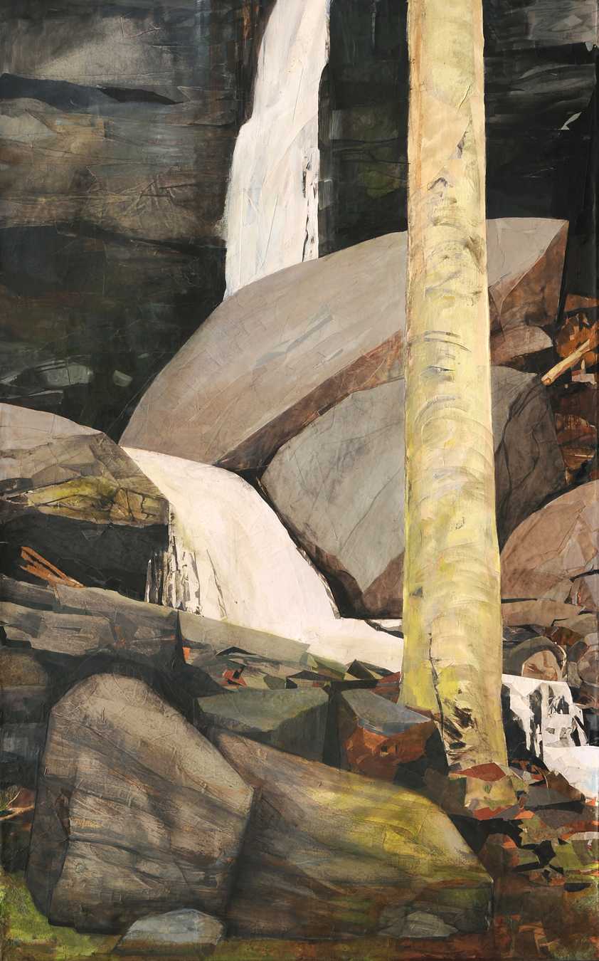 Falls with Yellow Birch 2011