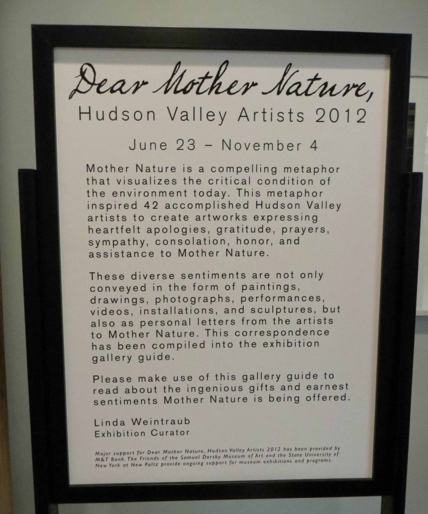 """Dear Mother Nature"", Dorsky Museum"
