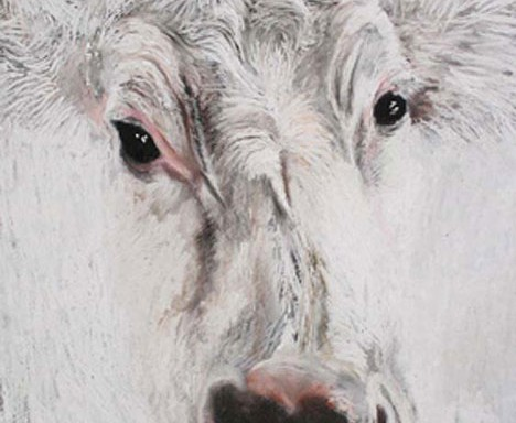"Gillian Jagger, ""White Cow,"" 2009, pastel on paper"