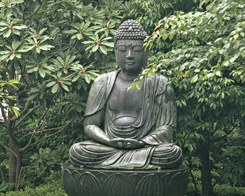 Driving with the Buddha, or Creating aMeditation Garden