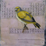 1. GMO Cardinal, 2012. 54x56 L-C_SM