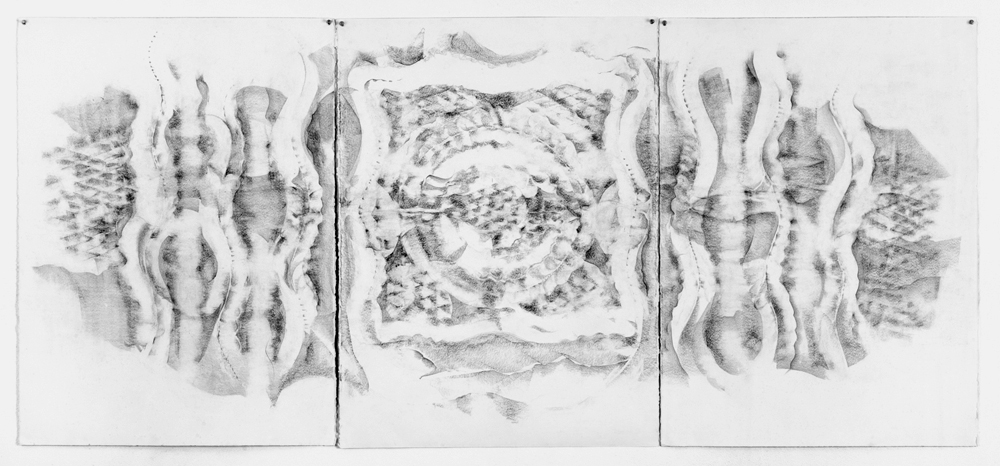 Lynn Palumbo, Triptych 2, 2014. Graphite on paper, 30 x 66""