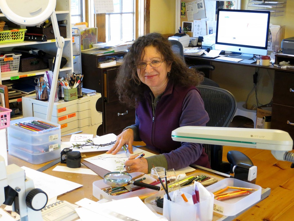Wendy Hollender in her studio