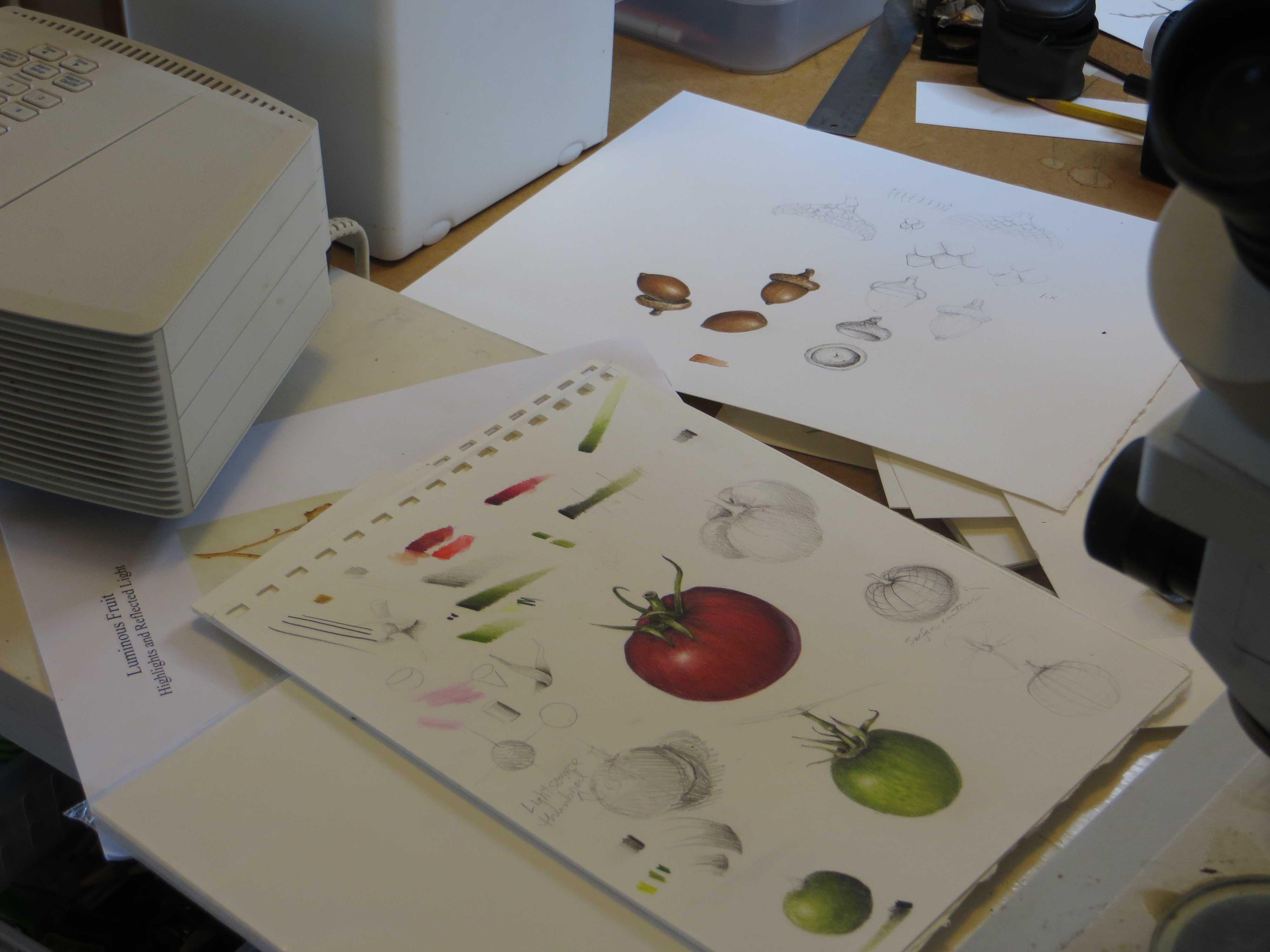 closeup.drawing