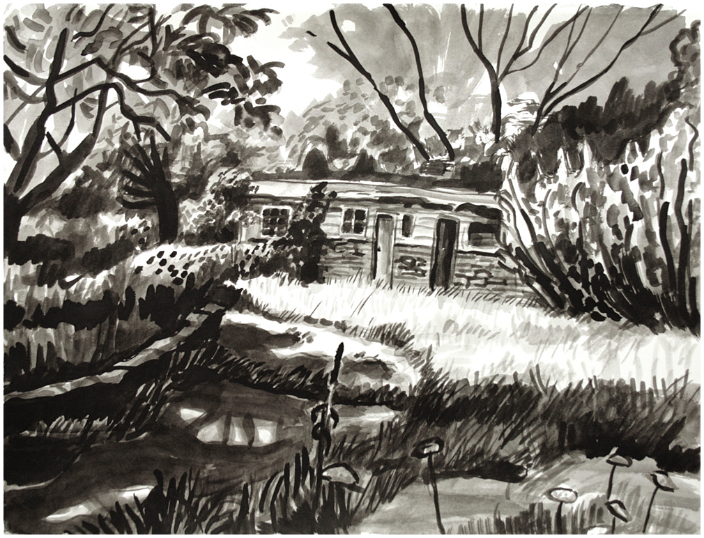 "Amy Talluto, ""Beaver Lake House: Old Dormitories"", 2013, Ink on paper. 11"" x 14"""