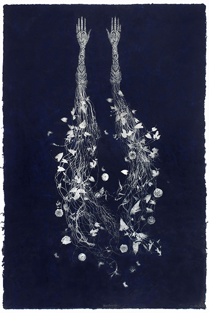 "Valerie Hammond, ""Blue Anemone,"" 2011, relief printed lithograph on handmade Kozo paper, 72 x 48 in."