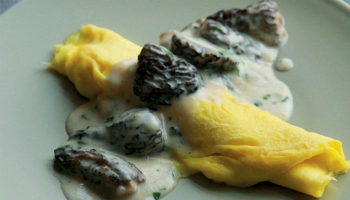 omelet with creamy morels