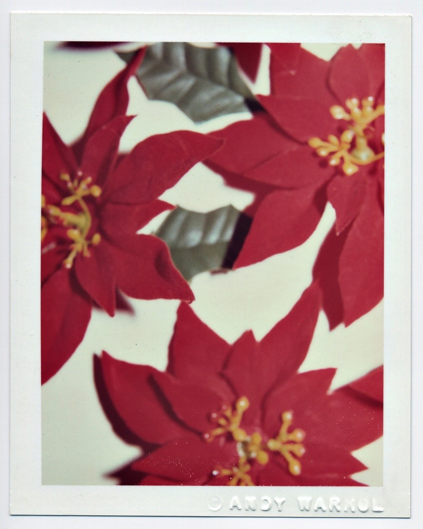 Andy Warhol, Christmas Poinsettias, 1982, polacolar ER, collection of Frances Lehman Loeb Art Center, Vassar College, Gift of Andy Warhol Foundation for the Visual Arts, Inc., 2008.7.99  (On loan to the Samuel Dorsky Museum of Art.)