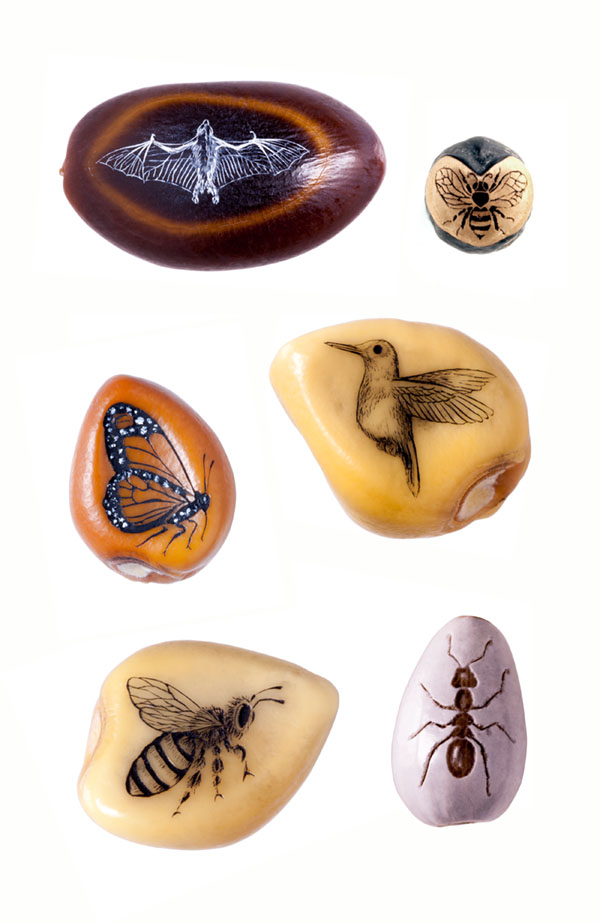 Pollinators2.sm